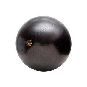 1063770_bola-suica-55cm-pretorian-performance-fit-ball-training-anti-burst_m1_635828405990510000